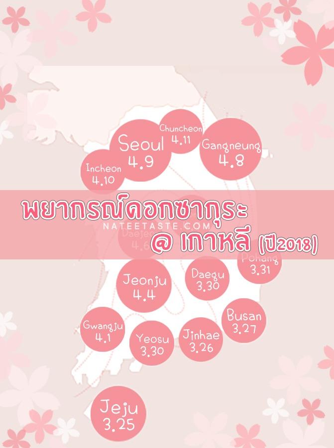 พยากรณ์ดอกพ็อดกด : 벚꽃 (ดอกซากุระเกาหลี) ประจำปี 2018 : 2018 Korea Cherry Blossom Forecast